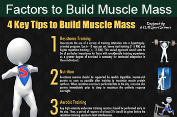 Factors to Build Muscle Mass