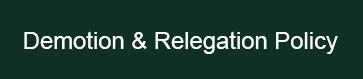 Demotion & relegation policy